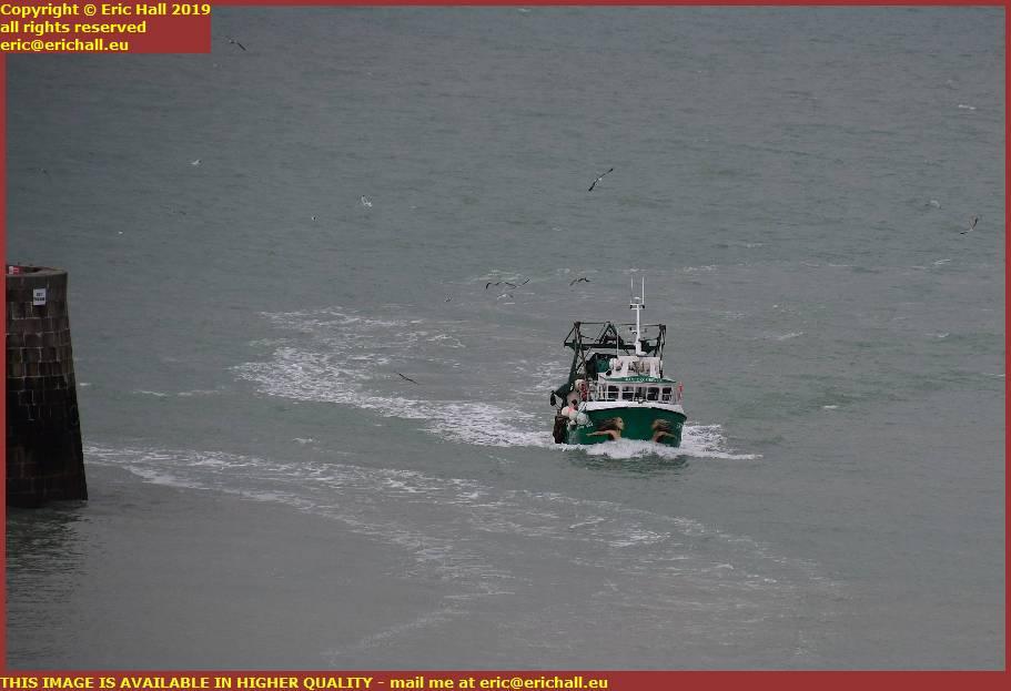 seagulls trawler entering port de granville harbour manche normandy france
