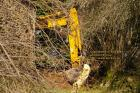 jcb digger making the track fevrier february 2009 copyright free photo royalty free photo
